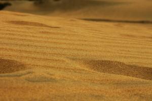 Image of desert sand